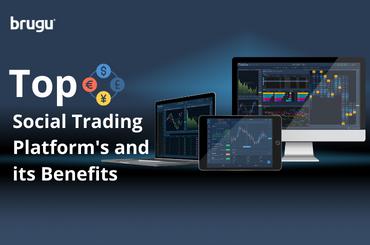 Top social trading platforms